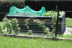 Garten Hochbeet 5