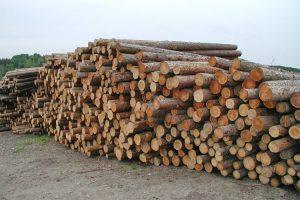 laerchen-rundholz-natur-rinde-holz-heckele